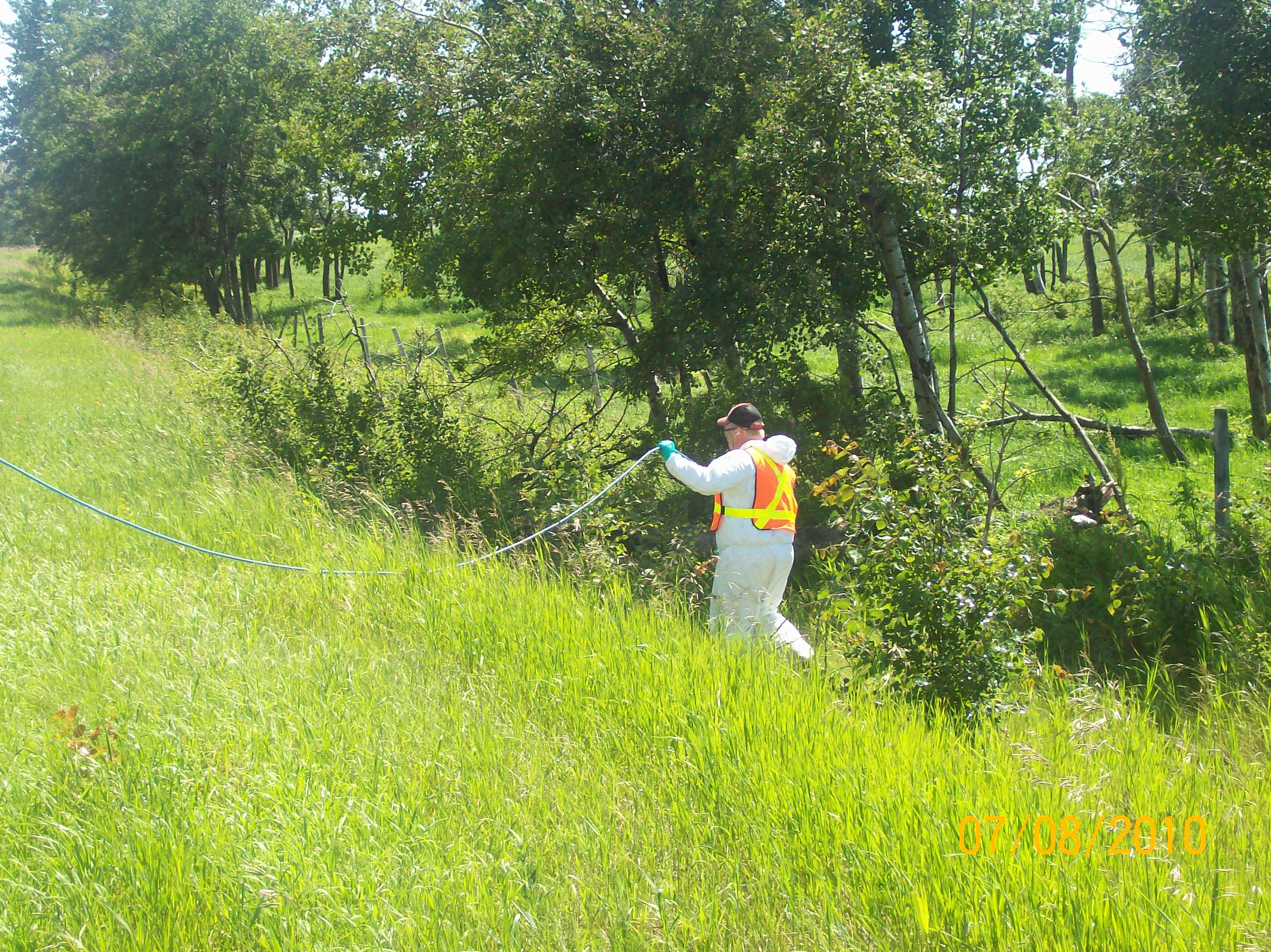 Brush Spraying_2_2