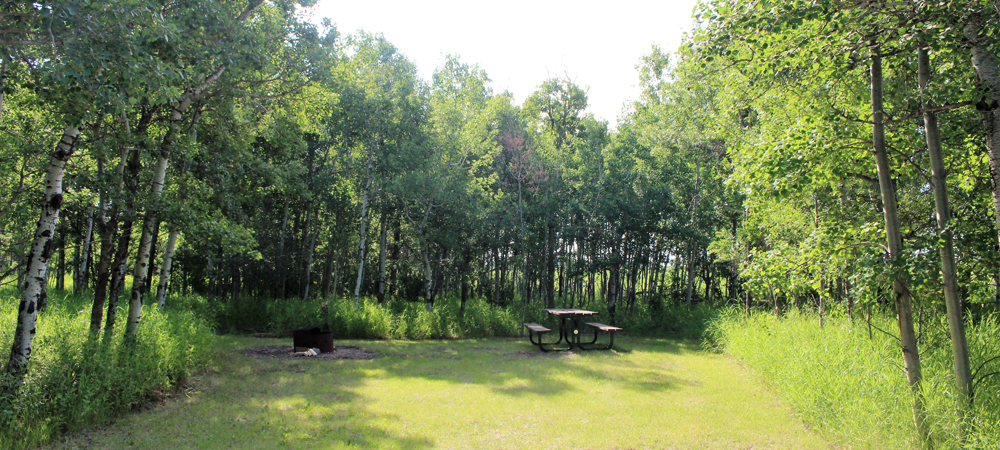 Edgerton Day Campground